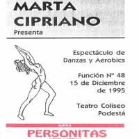 Muestra de Danzas